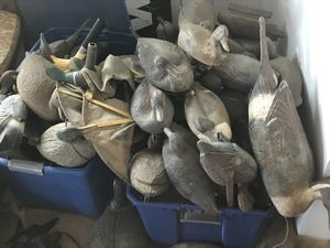 Duck hunting decoys for Sale in Paradise, CA