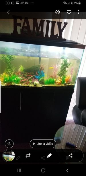 30 Gallons Aquarium with stand and fist for Sale in Grinnell, IA
