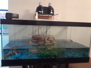 Fish tank with 2 water turtles. for Sale in Miami Gardens, FL