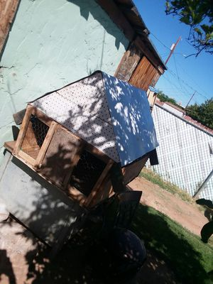 Animal cage/coop for Sale in Glendale, AZ