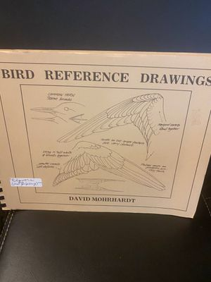 Bird Reference Drawings by David Mohrhardt signed for Sale in Whiteriver, AZ
