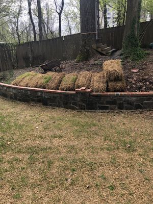 10 Straw bundles for Sale in Silver Spring, MD