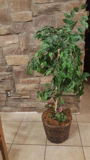 Decorative artificial plant for Sale in Chandler, AZ