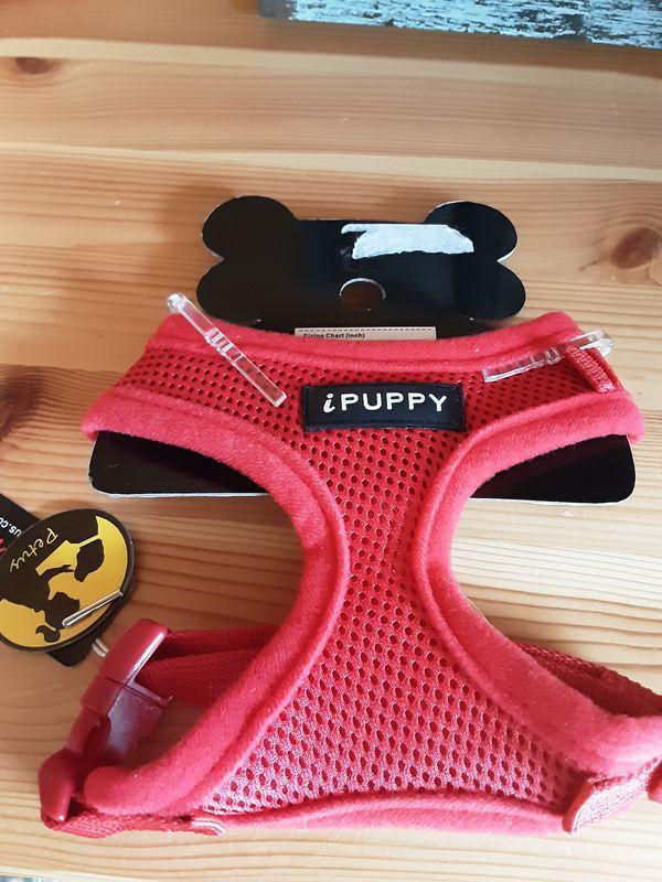 Ipuppy harness.