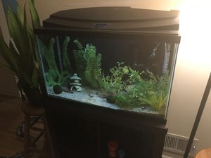 Aquarium Hood for sale | Only 4 left at -75%