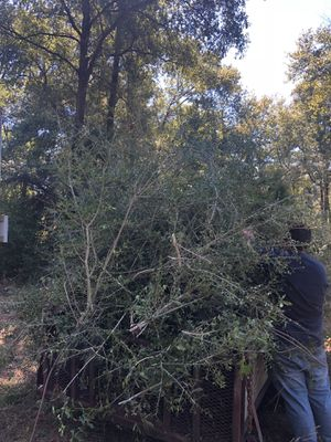 Land clearing for Sale in Crestview, FL