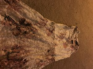 White and pink and purple dress for Sale in Reston, VA