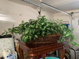 """Fake green plant 21"""" long x 7"""" wide for Sale in Menifee, CA"""
