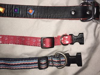 Dog collar 22in 12in and 11in for Sale in Phoenix,  AZ