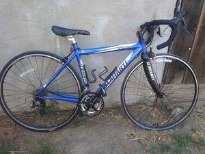 Scattante Road Bike for Sale in Fresno, CA