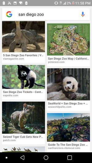San Diego Zoo for Sale in San Diego, CA