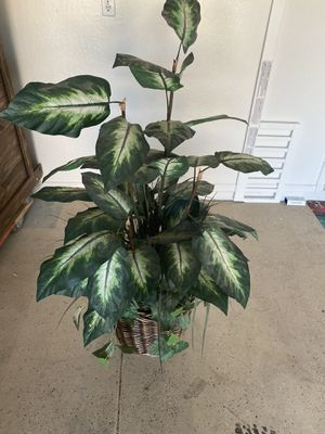 Various fake plants and trees for Sale in Goodyear, AZ