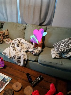 Pull out couch and loveseat for Sale in Norwalk, CA