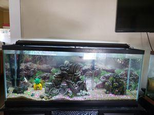 75 Gallon Aquarium for Sale in Festus, MO