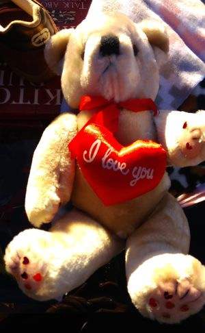 Teddy Bear for Sale in Albuquerque, NM