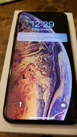 Unlocked iPhone xs max 256gb for Sale in Tampa, FL