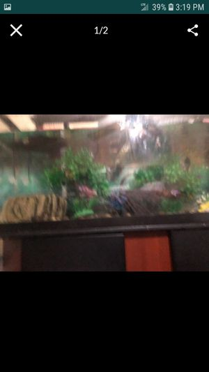 Fish tank for Sale in Fall River, MA