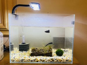 European 10 gallon aquarium for Sale in Houston, TX