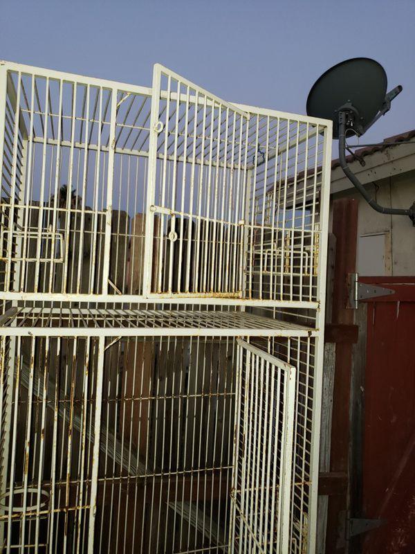 Bird cage double