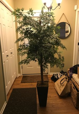 Plant for Sale in Macomb, MI