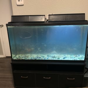 55 Gallon Fish Tank (NO LEAKS) for Sale in Houston, TX