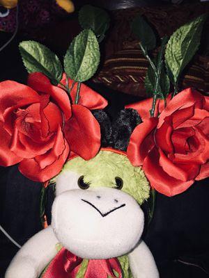 Flowers for Sale in Norwalk, CA