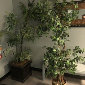 Fake Trees And Plants for Sale in Sloan, NV
