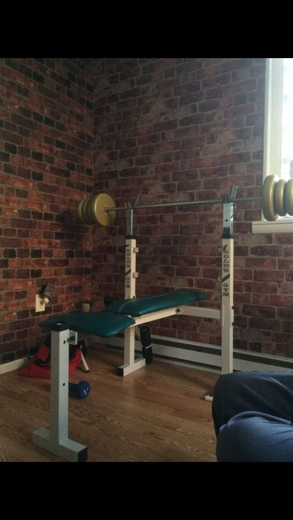 Golds Gym Weight Bench
