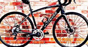 FREE bike sport for Sale in Bridgton, ME