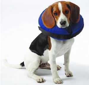 """Inflatable Collar Fits neck sizes10""""-13"""" for Sale in Millcreek, UT"""