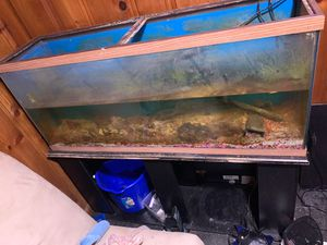 60 gallon tank with stand light heater and filter for Sale in Washington, DC