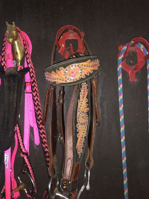 Headstall and Breastcollar for Sale in Palm Beach Gardens, FL