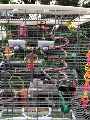 VISION Bird cage, stand and accessories. for Sale in Laurel, MD