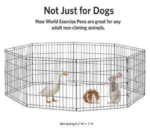 Animal Playpen for Sale in Boston, MA