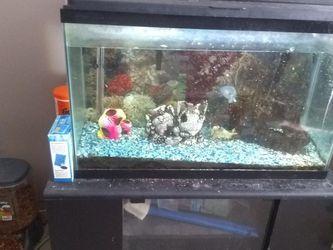 Fish Tank for Sale in Edmond,  OK
