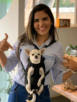 Hand free dog backpack for Sale in Los Angeles,  CA