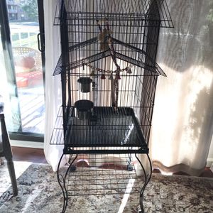 Bird Cage With Toys for Sale in Alexandria, VA