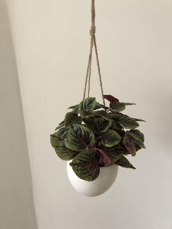 Fake hanging plant