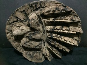 fractal burnt art for Sale in Buckhannon, WV