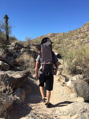 Hiking backpack child holder for Sale in Laveen Village, AZ