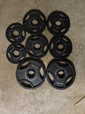 45 lbs of weight 2 x 10's, 4 x 5's and 2 x 2.5's for Sale in Franconia, VA