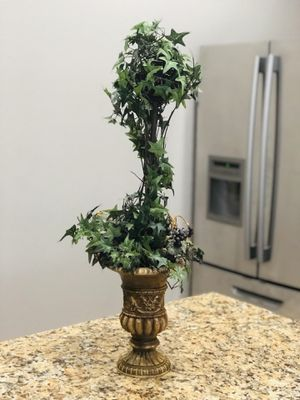 Topiary for Sale in Humble, TX