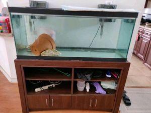 75 gal aquarium with accessories for Sale in Boynton Beach, FL