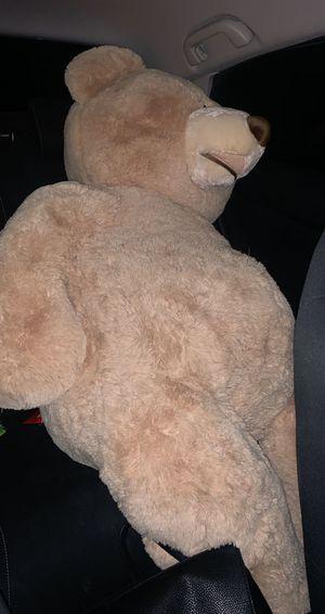 costco bear for Sale in Chula Vista, CA