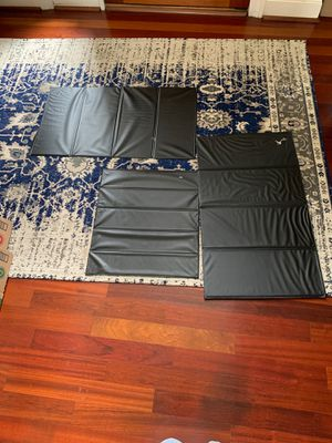 Sofa/chair revive for Sale in Chesapeake, VA