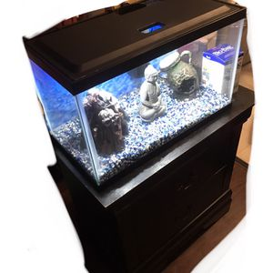 10 Gallon Fish Tank With Stand for Sale in Stanton, CA