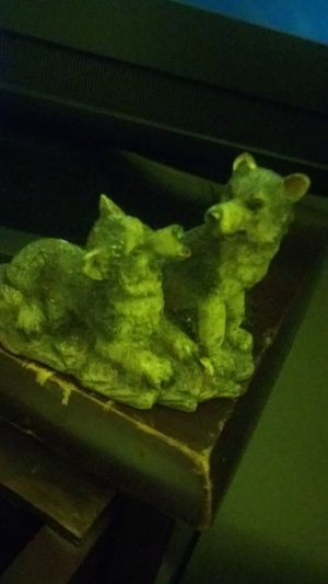 Wolves for Sale in Milwaukie, OR