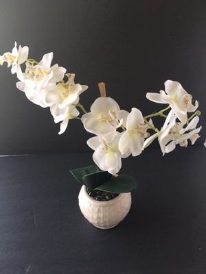 """Faux White Orchid Flowers Plant in Terracotta Pot 4 ¾ """" Tall for Sale in La Mirada, CA"""