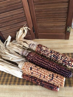 Holiday Decor - Indian Corn for Sale in Colleyville, TX