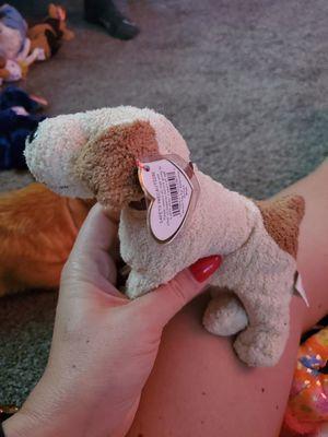 Rufus the dog TY beanie baby for Sale in Salt Lake City, UT
